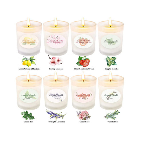 CREASHINE Scented Candles Gift Set